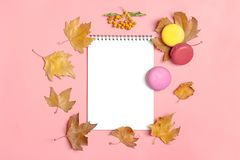 Dry Maple Leaves, Macaroons And White Notepad On Pink Background Autumn Concept To Do List Mock Up Top View Flat Lay Stock Images