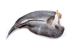 Dry marinated baby mud-fish one sun on white Stock Image