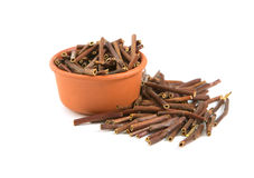 Dry Marsh Cinquefoil, Potentilla palustris. Dry medical herbs. Royalty Free Stock Images