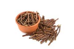 Dry Marsh Cinquefoil, Potentilla palustris. Dry medical herbs. Royalty Free Stock Image