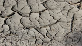 Dry Mud. Dry marsh. soil dryness on bog bottoms truly nature in Europe Royalty Free Stock Image