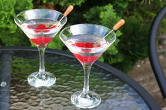 Dry Martinis with red cherries. Two glasses of Dry Martinis waiting in gasrden Stock Image