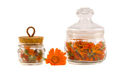 Dry medical herbs calendula in glass jars isolated Stock Images