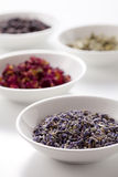 Dry medicinal herbs. Assortment of dry medicinal herbs in bowls Stock Image