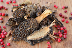 Dry Morels in a kitchen Royalty Free Stock Image