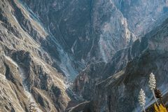 Dry mountain canyon. In Peruvian Andes by sunny morning royalty free stock image