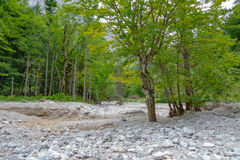 Dry mountain riverbed Stock Images