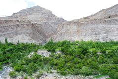 Dry mountains and greenery in Ladakh Stock Photo