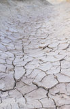 Dry mud. The dry mud in summer Royalty Free Stock Photo