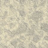 Dry mud. Seamless texture for background Royalty Free Stock Photos