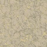 Dry mud. Seamless texture Royalty Free Stock Images