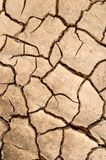 Dry mud cracks texture Stock Image