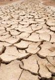 Dry mud cracks texture Royalty Free Stock Photos