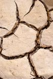 Dry mud cracks texture Royalty Free Stock Photo