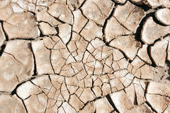 Dry mud desert background texture Royalty Free Stock Photography
