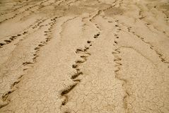 Dry mud desert landscape drought lack of precipitations concept royalty free stock photography