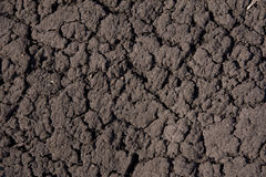 Dry mud earths Stock Photography