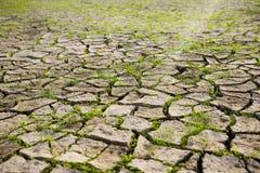 Dry Mud Field Stock Photo