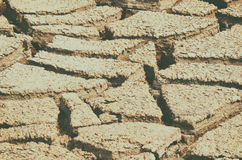 Dry mud field texture Royalty Free Stock Photo