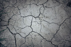 Dry mud land background texture Stock Images