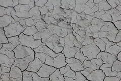 Dry mud near the river. In my coutry Stock Images