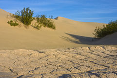 Dry Mud and Sand Dune Stock Photography