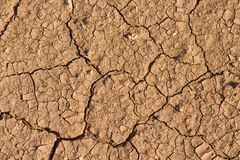 Dry mud texture Royalty Free Stock Photography
