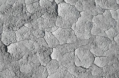 Dry mud texture, raw Stock Image
