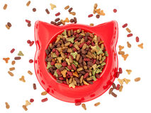 Dry  multicolored  pet food for cat in the red plastic bowl Royalty Free Stock Photos