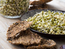 Dry mung bean sprouts Stock Photography
