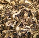 Dry mushroom boletus edulis Royalty Free Stock Photography