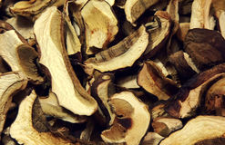 Dry mushrooms Stock Image