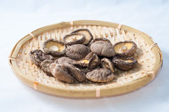 Dry Mushrooms Royalty Free Stock Images