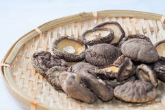 Dry Mushrooms Stock Photography