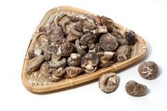 Dry Mushrooms isolated Stock Photography