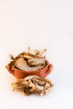 Dry mushrooms in a little brown pottery cup white background Royalty Free Stock Images
