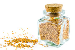 Dry mustard seed in glass bottle and heap of mustard isolated. Dry mustard seeds in glass bottle and heap of mustard isolated on white background. Closeup macro Royalty Free Stock Image