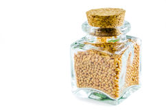 Dry mustard seed in glass bottle isolated on white background. Closeup macro shot Royalty Free Stock Photography