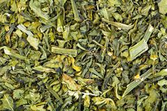 Dry Nightshade, Brinjal, Solanum melongena Linn for medical use. High resolution photo Stock Photography