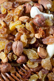 Dry nuts Stock Images