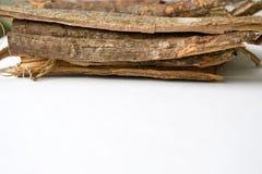 Dry oak bark on a white background. Quercus cortex. Quercus robur.  Royalty Free Stock Photo