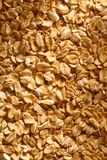 Dry oats cereal Stock Image
