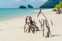 Dry old driftwood on a sandy beach Poda Island. Thailand Stock Photos