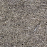Dry old grass texture seamless background Royalty Free Stock Photos