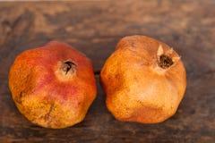 Dry and old pomegranates Royalty Free Stock Photo