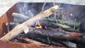 Dry old tree branches burn in the grill stock video