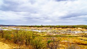 The almost dry Olifant River and drought stricken land in Kruger National Park. In South Africa royalty free stock photo