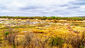 The almost dry Olifant River and drought stricken land in Kruger National Park. In South Africa royalty free stock photos