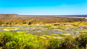 The almost dry Olifant River in Kruger National Park in South Africa at the end of the dry season. Viewed from Olifant Camp Stock Image