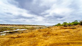 The almost dry Olifant River in Kruger National Park in South Africa. The almost dry Olifants River at the end of the dry season in Kruger National Park in South Stock Image
